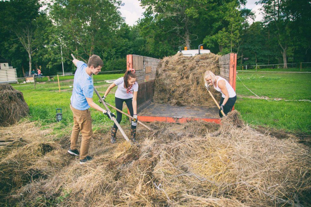 farm work-hay